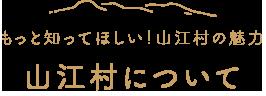 山江村について